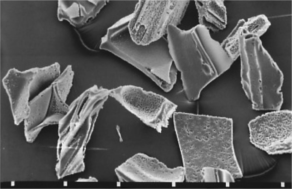 This scanning electron micrograph shows shards of volcanic ash in the ...